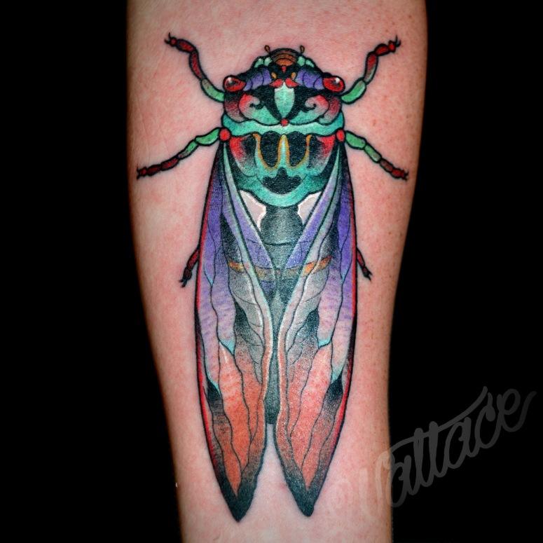 cicada tattoo