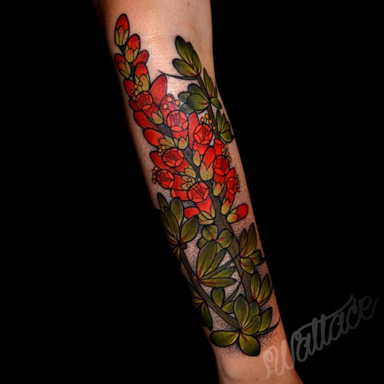 z Ocotillo Tattoo